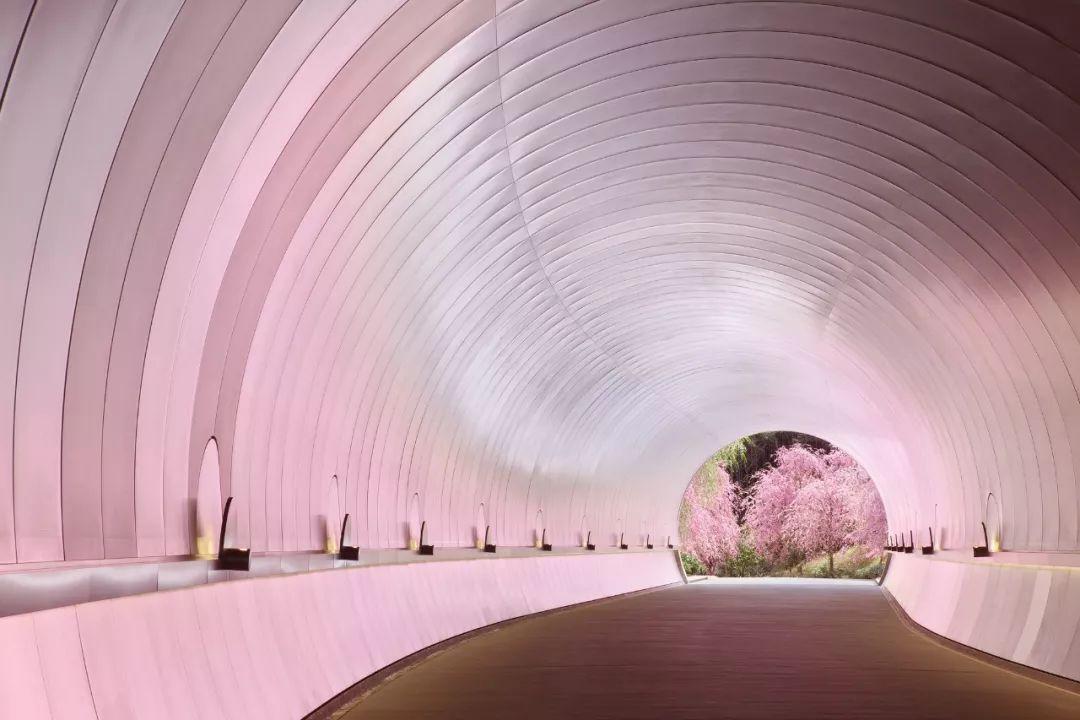 全球10座小众又设计酷炫的博物馆!_34