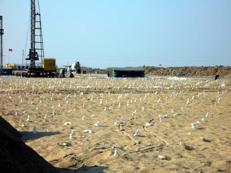 土木工程施工-第4讲基坑验槽及地基加固处理