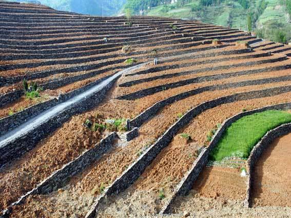 农业综合开发土地治理项目设计招标文件