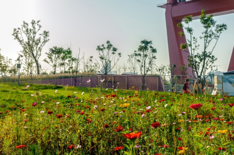 Yangpu-Bridge-Park-DLC-18