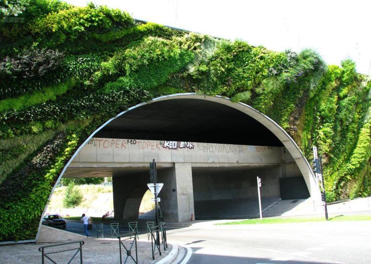 街道植物墙案例赏析