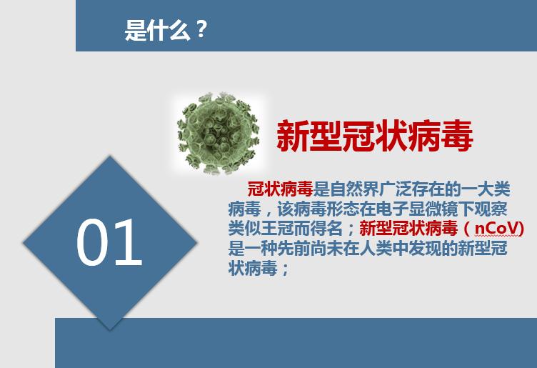 17新型冠状病毒