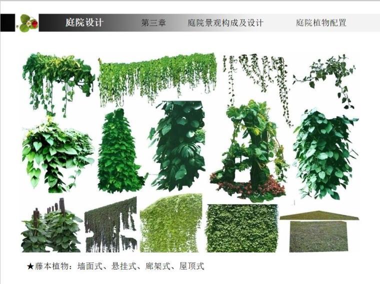 庭院景观设计 (7)