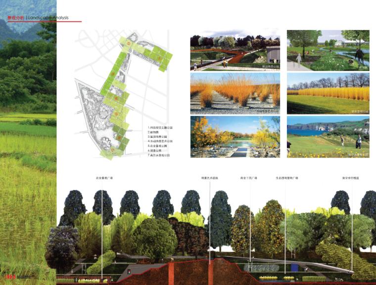 景观常规分析图+景观分析 (9)