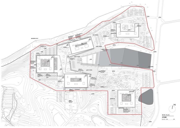 南京公共医疗中心-Nanjing_Public_Medical_Center_Left_site总平图