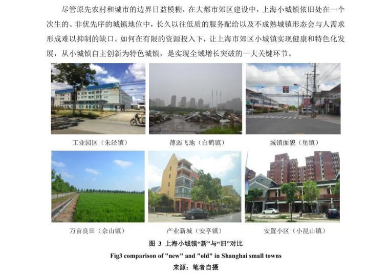 上海特色小城镇发展大都市郊区转型的再辨析-上海特色小城镇发展:大都市郊区转型的再辨析 (2)