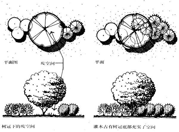 植物设计的学问·实用_29