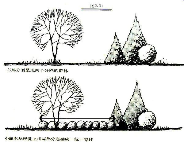 植物设计的学问·实用_25