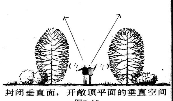 植物设计的学问·实用_41