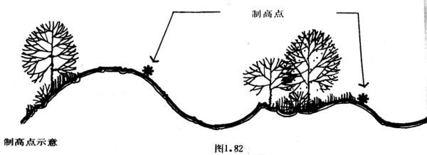 植物设计的学问·实用_47