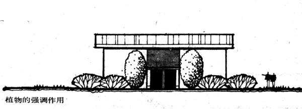 植物设计的学问·实用_53