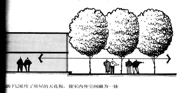 植物设计的学问·实用_55