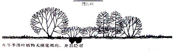 植物设计的学问·实用_60