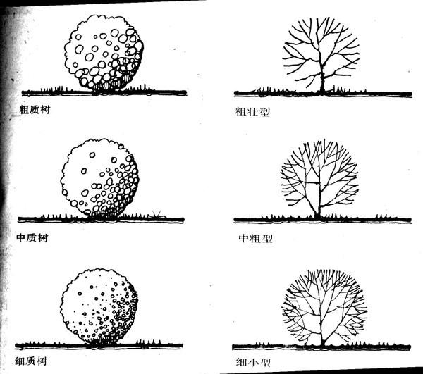 植物设计的学问·实用_58