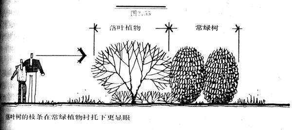 植物设计的学问·实用_64