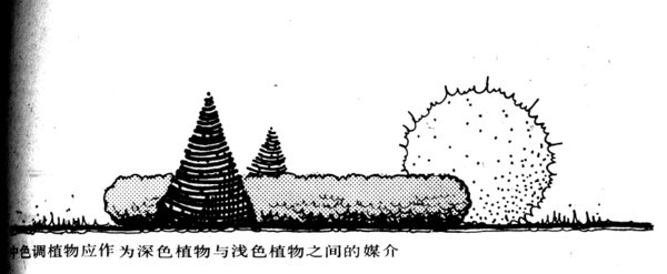 植物设计的学问·实用_66