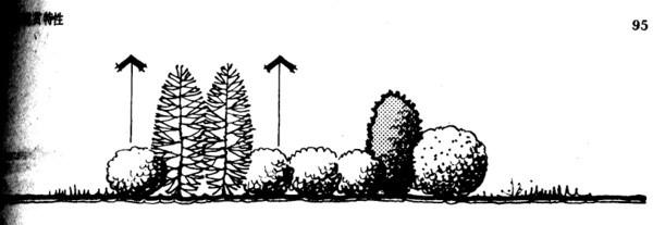 植物设计的学问·实用_72
