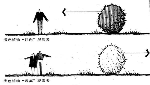 植物设计的学问·实用_68