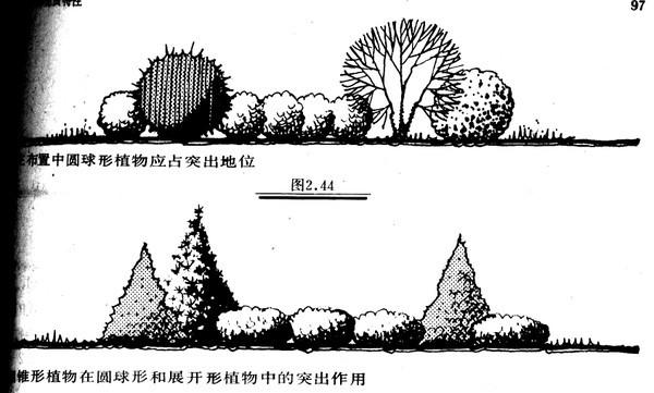植物设计的学问·实用_71