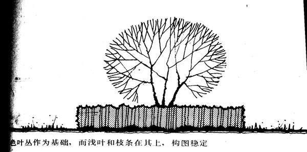 植物设计的学问·实用_69