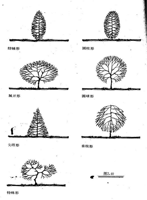 植物设计的学问·实用_75