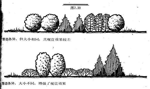 植物设计的学问·实用_74