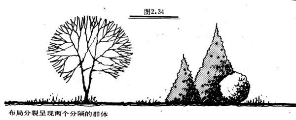 植物设计的学问·实用_79