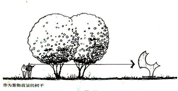 植物设计的学问·实用_86