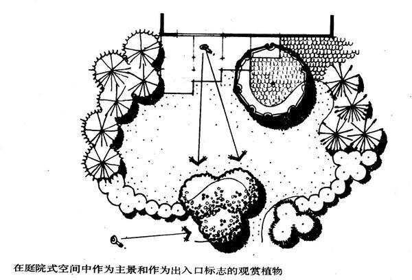 植物设计的学问·实用_84