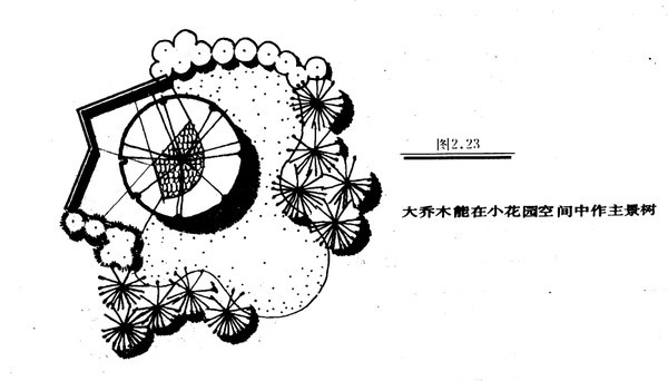 植物设计的学问·实用_89
