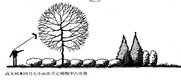 植物设计的学问·实用_88