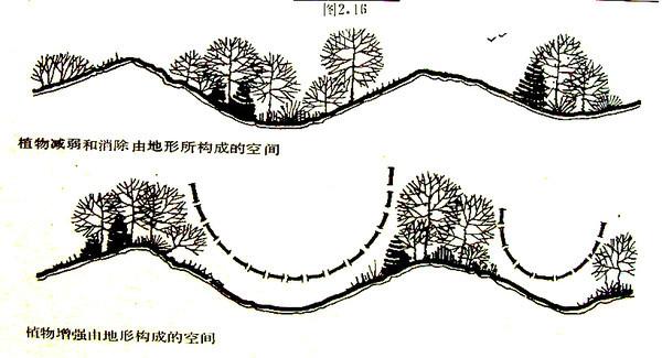 植物设计的学问·实用_95
