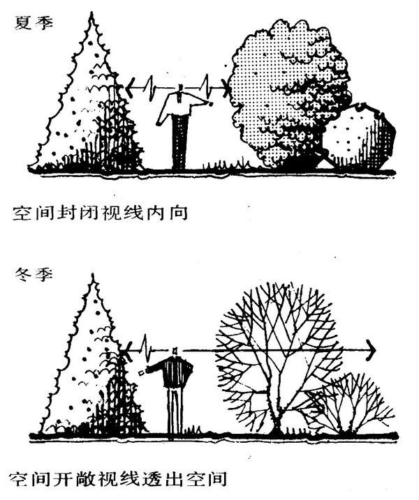 植物设计的学问·实用_100