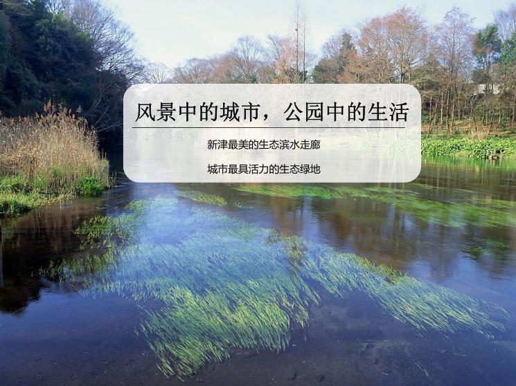 1-新津县杨柳湖水环境综合治理项目-封面