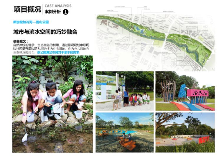 10-新津县杨柳湖水环境综合治理项目-案例分析
