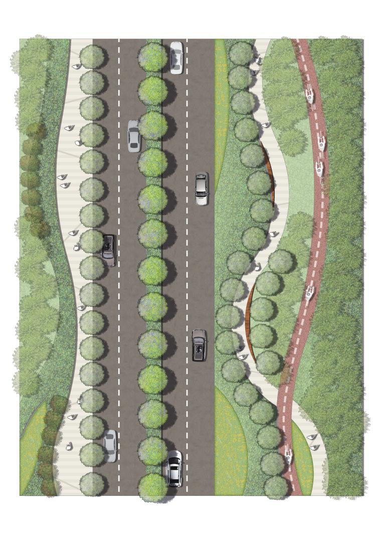 道路标准段PSD彩色横断面、剖面图