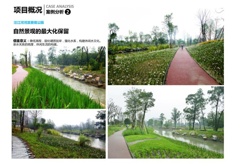 11-新津县杨柳湖水环境综合治理项目-案例分析