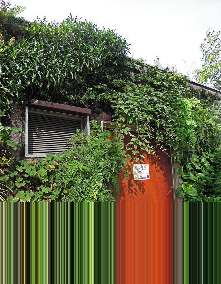 阿曼多利耶植物墙案例-1534324210609681