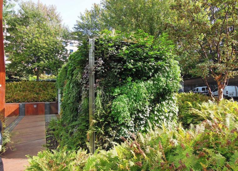 阿曼多利耶植物墙案例-1534324210707622
