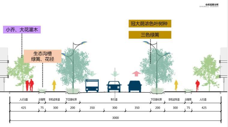 市政道路分析