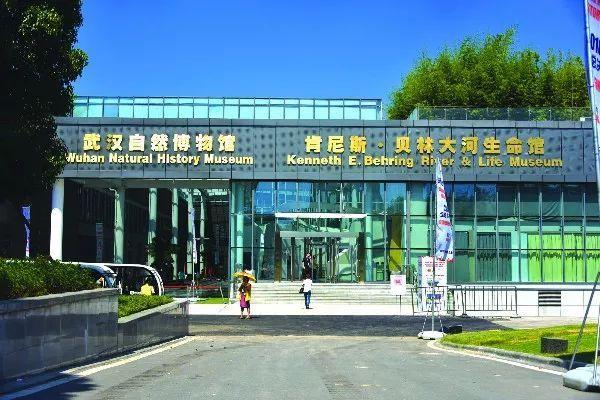 展馆云   武汉自然博物馆 -贝林大河生命馆