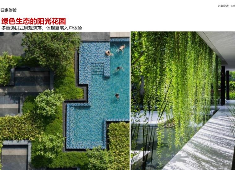 绿色生态的阳光花园