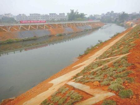 堤岸应急加固工程实施方案