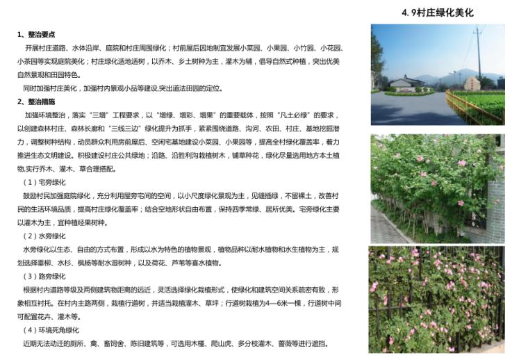 村庄绿化美化