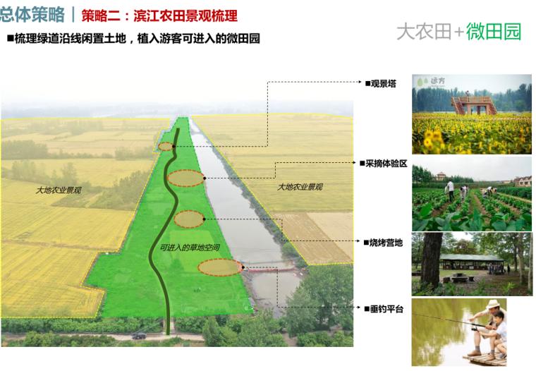 滨江农田景观梳理1