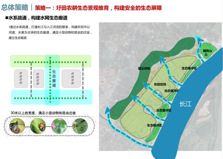 水系疏通,构建水网生态廊道