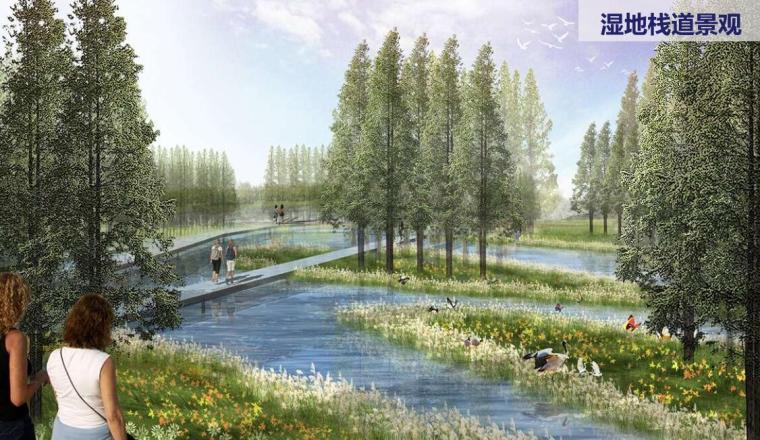 湿地栈道景观效果图