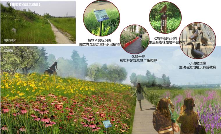[江苏]全域旅游示范区发展总体规划-主要节点效果改造