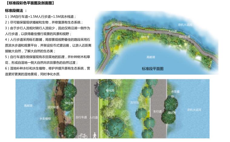 [江苏]全域旅游示范区发展总体规划-标准段彩色平面图及剖面图