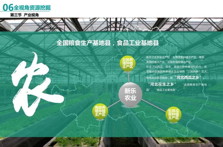 新乐市全域旅游发展规划设计方案 (3)
